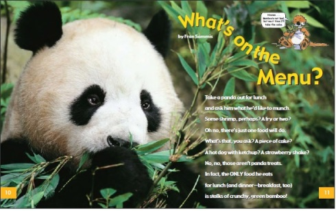 Panda Fun | The Wild World of Zoobooks