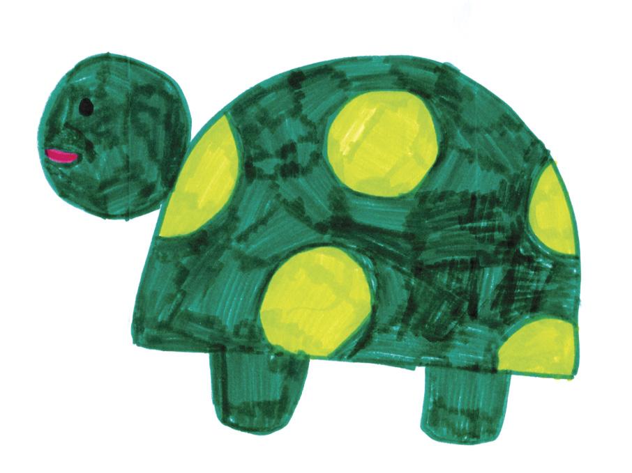 Kids art turtles kids art turtleshannah