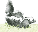 Kids_Art_Skunks_Joyce