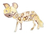 Kids_Art_WildDogs_Emma