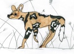 Kids_Art_WildDogs_Hannah