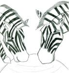 Kids Art Zebras_Areebah