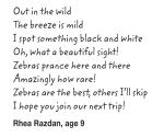 Zebras_poem_Rhea