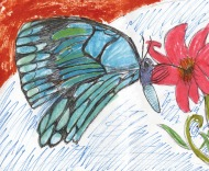 Kids Art BFlies_Rose