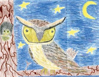 Kids Art_Birds of Prey_Bailey