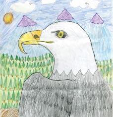 Kids Art_Birds of Prey_Martin